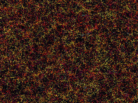 A slice through the map of the large-scale structure of the Universe from the Sloan Digital Sky Survey and its Baryon Oscillation Spectroscopic Survey. Each dot indicates the position of a galaxy six billion years into the past. Image: Daniel Eisenstein and SDSS-III.
